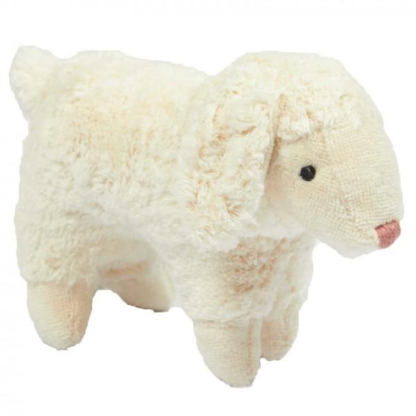 Senger Tierkind Schaf